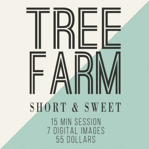 Tree Farm Short And Sweet!